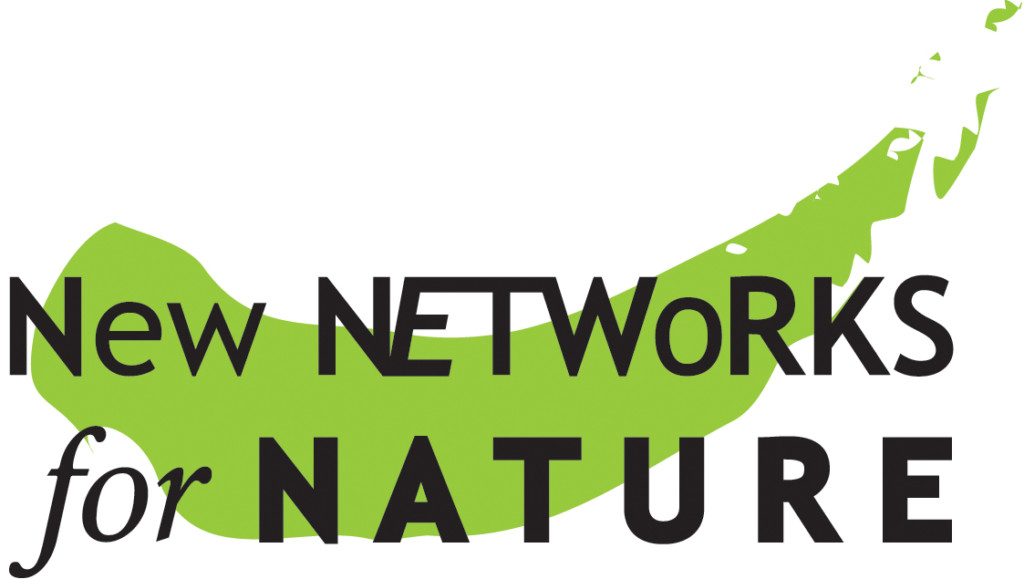 NN4N logo