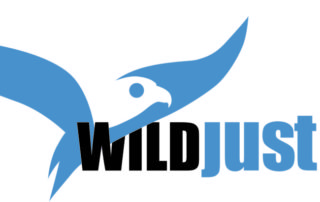 WildJustice_Logo_Main_HEX_5482AB