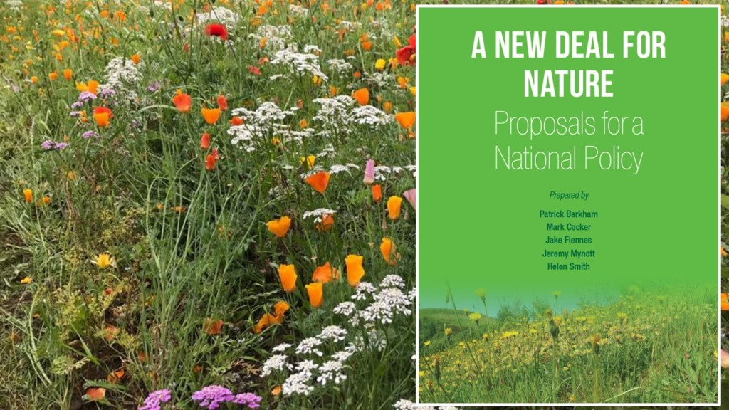A new deal for nature